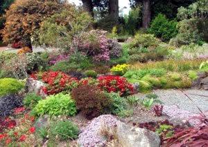 Rock garden ideas for creating a rock garden - Costruire giardino roccioso ...