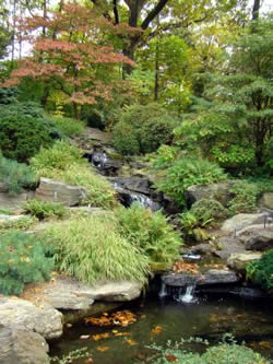 Rock Garden Ideas For Creating A