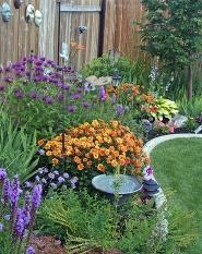 Create Shade Garden