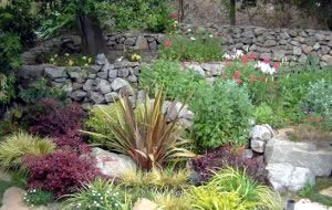 how to make a rock garden - Rock Garden Ideas