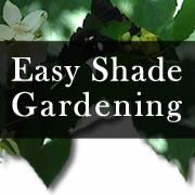 Easy Shade Gardening   Plants And Ideas